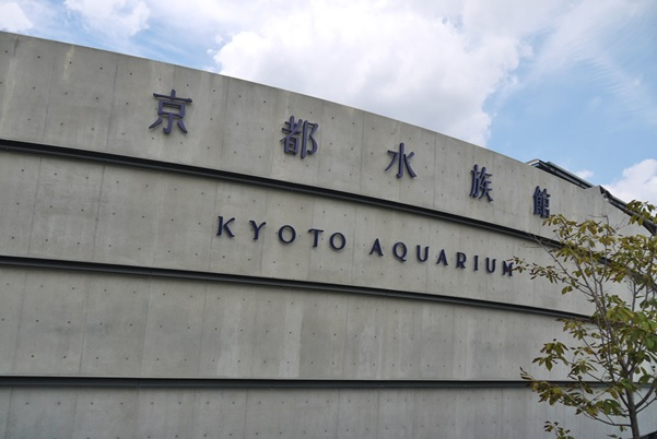 【のんびり楽しめる】屋内デートにおすすめの京都観光スポット