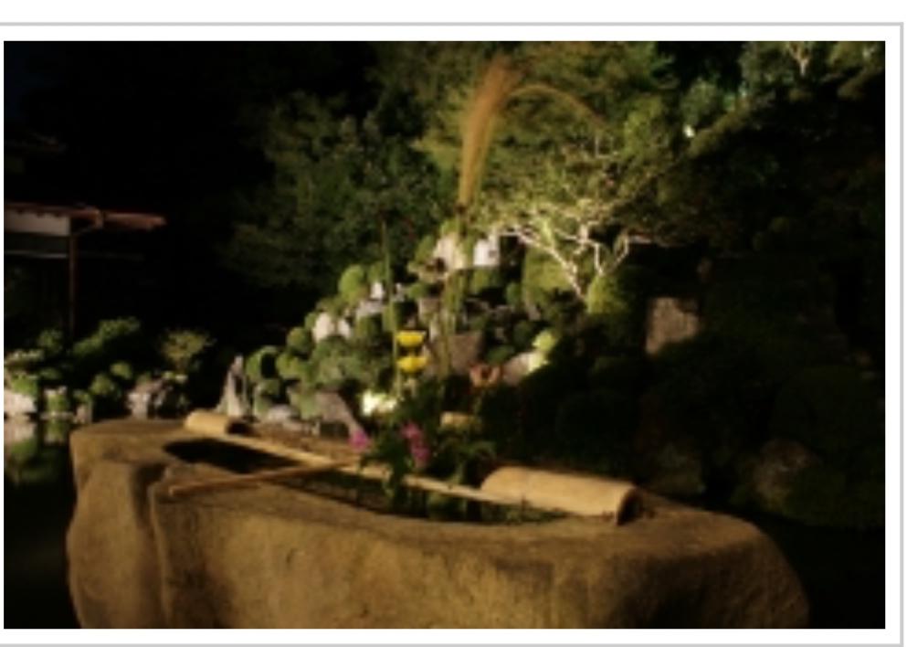 智積院の名勝庭園「利休好みの庭」