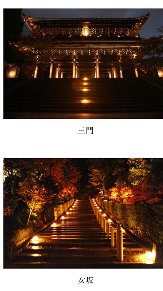 知恩院 秋のライトアップ2020(夜間特別拝観)